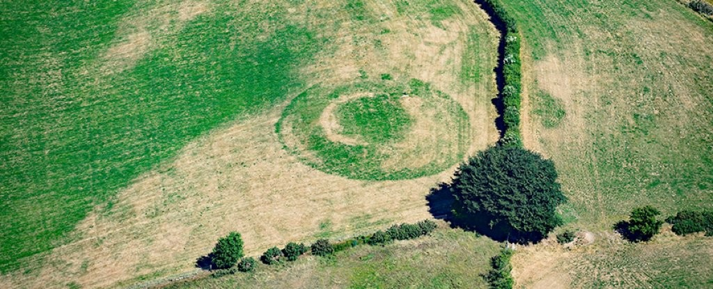 ancient-crop-mark-wales-0_1024